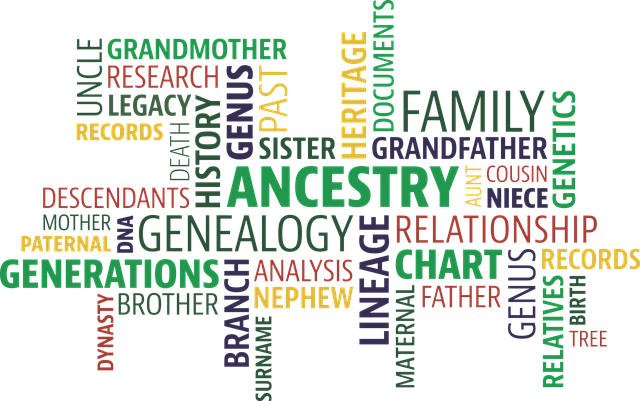 Word cloud relating to ancestor research